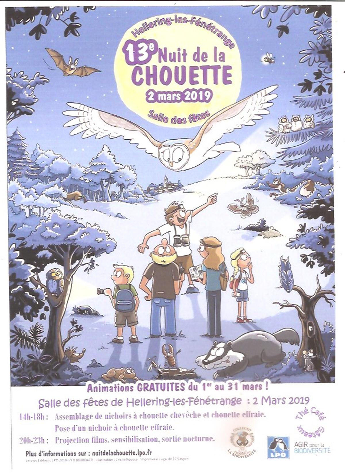 illustration-nuit-de-la-chouette_1-1546626601.jpg